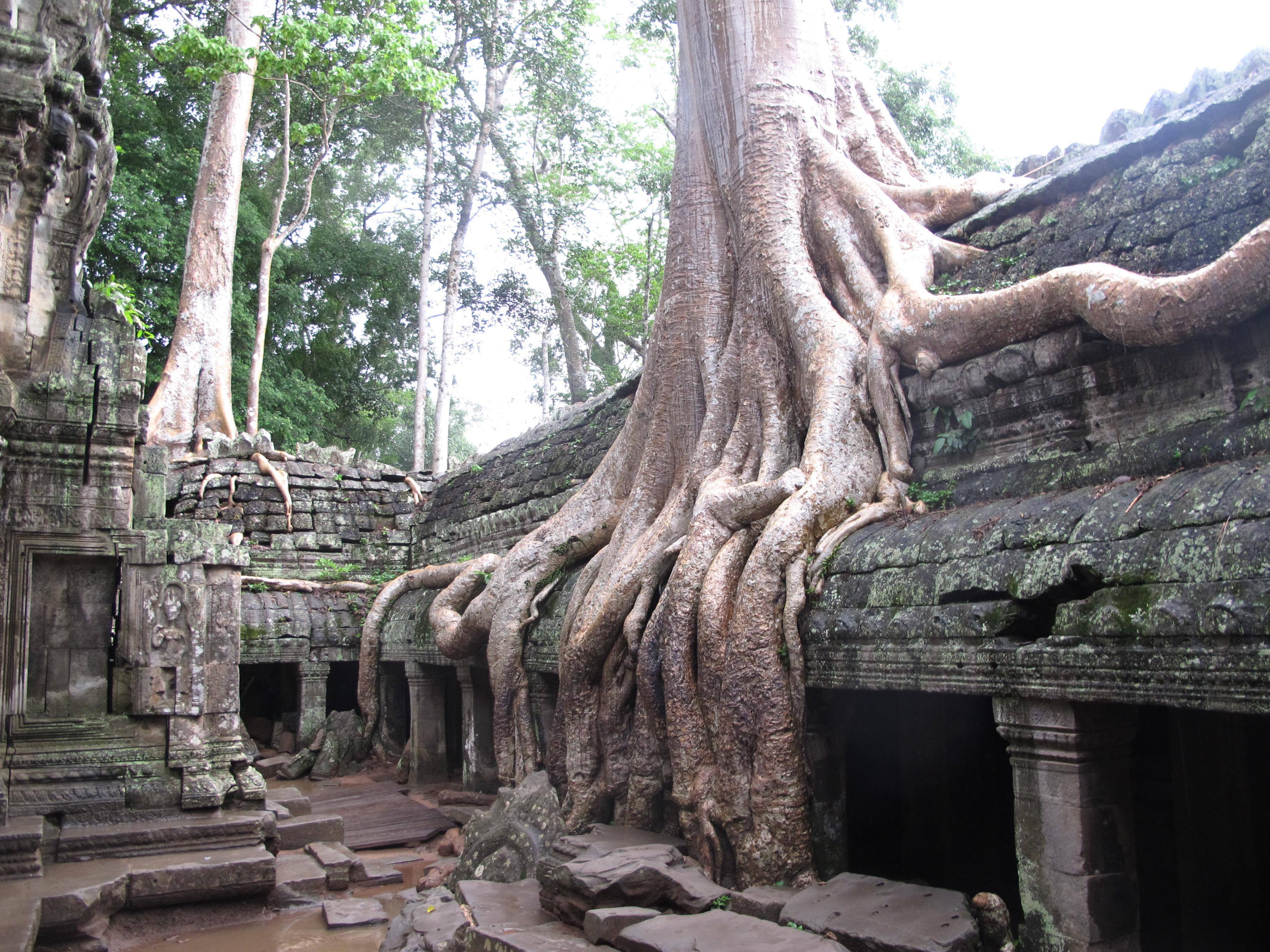 Une visite cambodge sur mesure inoubliable
