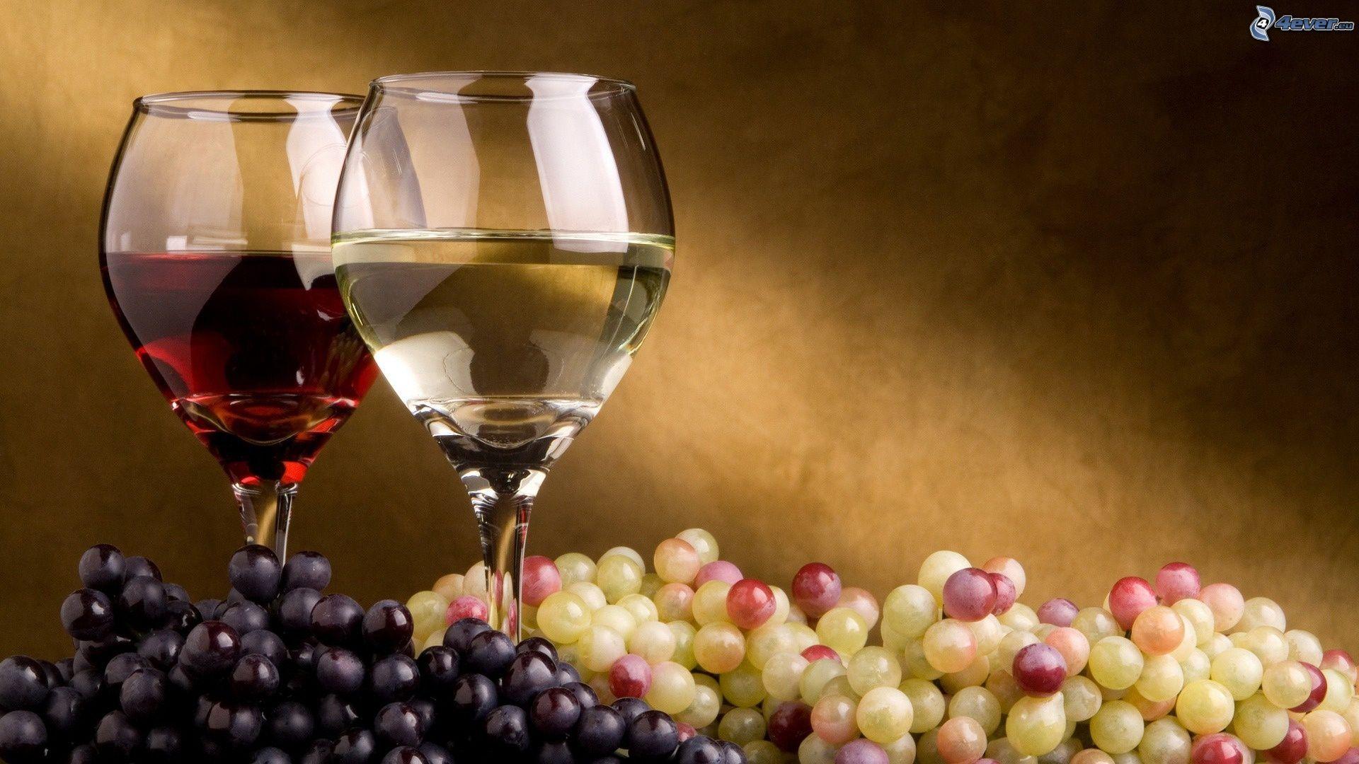 Investir dans le vin : faire de bonnes affaires